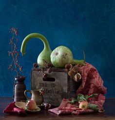 Yelena Strokin | Photography.