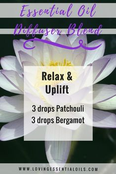 Aromatherapy Diffuser Blend | Relax & Uplift: 3 drops Patchouli, 3 drops Bergamot | Loving Essential Oils