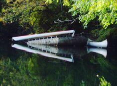 """My photo ""Reflection"" Tualatin River, Rivergrove, Oregon. . ."