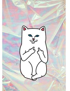 Ripndip cat with hologramy background #ripndip #wallpaper