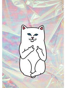 Ripndip cat with hologramy background #ripndip #wallpaper
