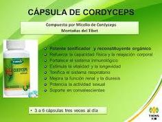 Capsulas de Micelio de Cordyceps Tiens  http://productossaludablestiens.blogspot.com.co/2013/11/micelio-de-cordyceps-capsulas.html