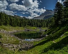 Lago di Scispadus - one of many beautiful lakes hidden in this fantastic valley under the Swiss Alps. #pinterestinspired #pinterestideas #pinterestphoto #photography #capture #switzerland #europe #europetravel #swiss alps #mountains #travel #nature #engadin #valley #lake #forest #trees Digital Photography, Landscape Photography, Lake Forest, Crystal Clear Water, Swiss Alps, Pinterest Photos, Mountain Landscape, That Way, Lakes