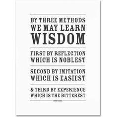 Trademark Fine Art Three Ways to Wisdom Iii Canvas Art by Megan Romo, Size: 18 x 24, Multicolor