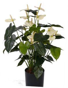 kunst bloeiende planten