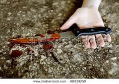 There were other knife which was found at the crime scene with blood, that other knife were given to Solomon by Lindi before the event.