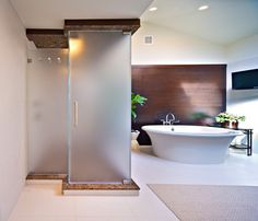 Shower doors - showers - new york - New York Shower Door  These doors are geometric and the shape is both interesting and different