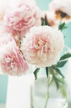 Lovely Clusters - Beautiful Shops: Still Life Pink Roses in vase Print