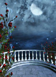 Creative Studio Photography Background Fantasy Fairy Tale