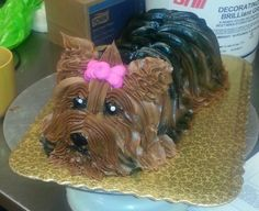 Adorable Yorkie cake made by Devin just now, wow!