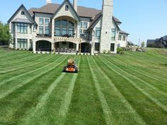 Perfect Image, Perfect Photo, Love Photos, Cool Pictures, Lawn And Landscape, Landscaping Company, Lawn Care, Mansions, House Styles