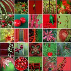 color stream photo ideas