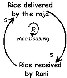 22 best ~ One Grain Of Rice ~ images on Pinterest | Rice grain, 2nd ...