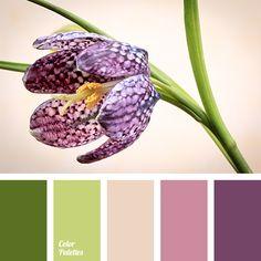 Color Palette #2072