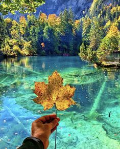 Fall season in Lake Blausee, Switzerland couldn't look more photogenic than this🇨🇭😍 - Tag someone you would take here! 🍁 Photo courtesy of… Blausee Switzerland, Wonderful Places, Beautiful Places, Places To Travel, Places To Visit, Travel Destinations, Honey Moon, Destination Voyage, Travel Abroad