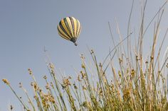 Up, up, up and away!  #loccitane #provence
