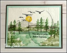 The Serene Stamper: All Occasions Card Class for March 2019 Sympathy Cards, Greeting Cards, Fun Fold Cards, Stamping Up Cards, Bird Cards, Watercolor Cards, Masculine Cards, My Stamp, Making Ideas