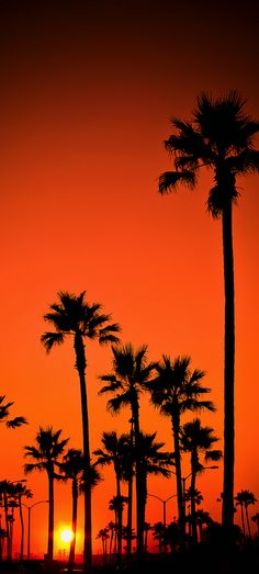 Newport Beach, California, USA. We enjoy so many nice sunsets in Orange County. When you are at our treatment center, you will certainly watch a few.