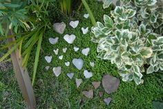 love the idea of collecting heart shaped rocks from everywhere you've been and displaying them in the garden.