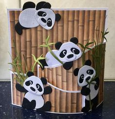 Pandas on Bamboo Attendance, sitting and holding bowl with candies Bamboo backdrop with green shoots Panda Party, Panda Birthday Party, Kids Birthday Cards, Fancy Fold Cards, Folded Cards, Kids Cards, Baby Cards, Decoration Creche, Panda Craft