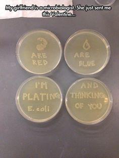 Microbiologist love… @Larissa Huchel  @Valerie Avlo Avlo Kristofic  this is me in ten years