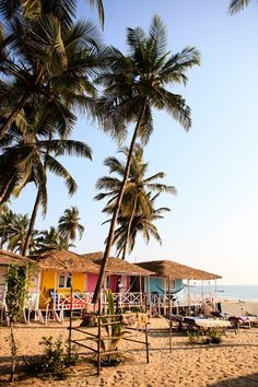 Beach huts in Goa, India                                                                                                                                                                                 More