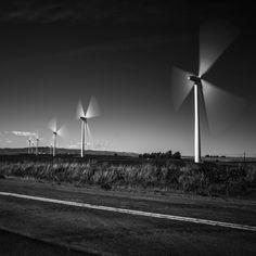 The turbines on highway 12 between Rio Vista and Suisun City.