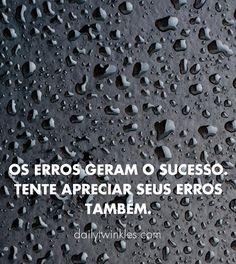 Os Erros geram o sucesso. Tente apreciar seus erros também.