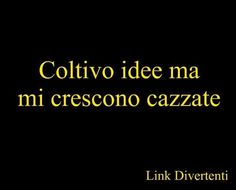 Italian Humor, Words Worth, Sarcasm Humor, Some Words, Jouer, Funny Photos, Slogan, Me Quotes, Laughter