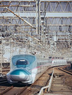 新幹線E5+E6系 Shinkansen E5+E6 http://xn--80aaoluezq5f.xn--p1acf/2017/02/26/%e6%96%b0%e5%b9%b9%e7%b7%9ae5e6%e7%b3%bb-shinkansen-e5e6/  #animearts  #animeart  #anime