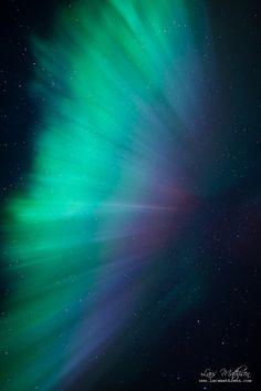 Aurora feather (by Lars Mathisen)