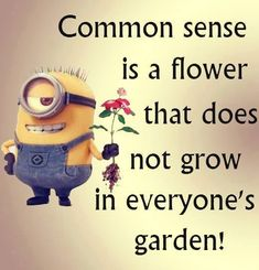 Common Sense Pictures, Photos, and Images for Facebook, Tumblr, Pinterest, and Twitter