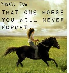 On my ninth b-day I rode a horse named cricket. I will never forget the touch of his mane.