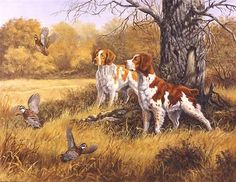 Shop the widest selection of bird wall murals and bird wallpaper at Murals Your Way. Hunting Art, Hunting Dogs, Quail Hunting, Hunting Stuff, Murals Your Way, Brittany Spaniel, Bird Wallpaper, Cross Paintings, Outdoor Art