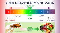 Zásadotvorná strava – zdroj zdraví | ProKondici.cz