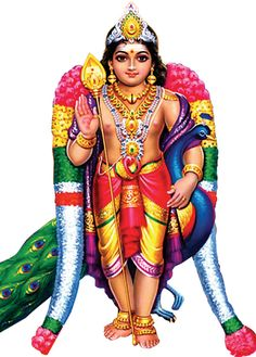 An important deity around South Asia since ancient times, Kartikeya is particularly popular and predominantly worshipped in South India, Sri Lanka, Singapore and Malaysia as Murugan Om Namah Shivaya, Free Cliparts, Lord Murugan Wallpapers, Lord Ganesha Paintings, Lord Balaji, Lord Shiva Family, Goddess Lakshmi, Shiva Shakti, Hindu Deities
