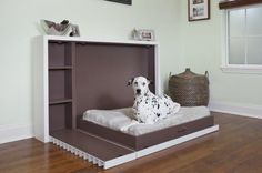 A hide away dog bed and shelves for their stuff! I LOVE THIS!
