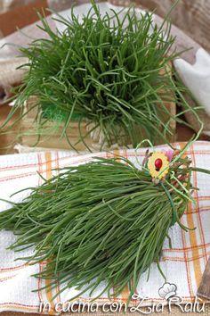 Agretti proprietà e ricette - In cucina con Zia Ralù Zia, Herbs, Food, Essen, Herb, Meals, Yemek, Eten, Medicinal Plants