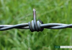 D-Fence - Tough barbed wire Ad | repinned by www.BlickeDeeler.de