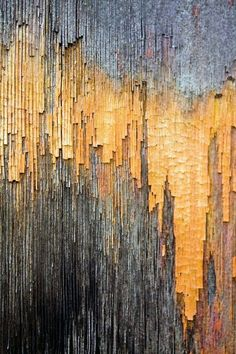 Texture - wood,peeling paint by Michael Chase Patterns In Nature, Textures Patterns, Nature Pattern, Art Texture, Grain Texture, Wood Texture, Beautiful Textures, Abstract Photography, Natural Texture