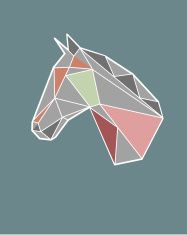 Geometric horse vector art illustration