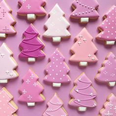 Some of the best decorated Christmas cookies! Make Christmas cookie ornaments for the Christmas tree and Christmas parties this year. Different cookie recipes, (some easy recipes) with some gluten free and vegan as well. Christmas Tree Cookie Cutter, Christmas Sugar Cookies, Holiday Cookies, Christmas Desserts, Christmas Baking, Christmas Parties, Gingerbread Cookies, Christmas Tree Biscuits, Christmas Cupcakes