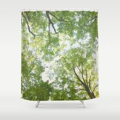Green leaf covered tree branches<br/> <br/> nature, country, modern, treetops, forrest, woodland
