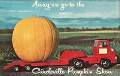 Vintage Travel Postcards: #Circleville Pumpkin Show #Ohio