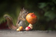 Looking for a hat by Andre Villeneuve