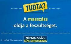 Ez a mozgósítás a Fidesz legnagyobb hadgyakorlata - Vélemény A 17, Reiki, Massage, Marketing, Humor, Youtube, Jazz, Training, Pop