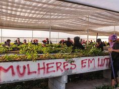 Professora Marcia Valeria: HISTÓRIA DO BRASIL - NO PRESENTE! Se prepara, vem ...