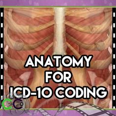 ICD 10 Anatomy Medical Coding. If you want to get the CEUs and you want to get your feet wet, start with that book, and its anatomy and terminology for ICD-10 – it's what it is.
