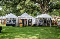Art booths under a 300 year old tree