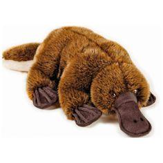 Peluche Baby Australia 17-20 cm National Geographic 3 años 1 ud